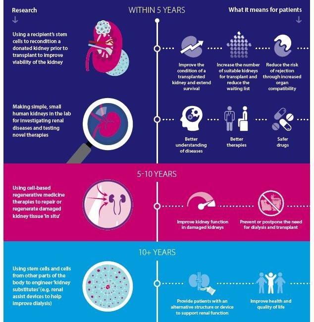Regenerative medicine infographic